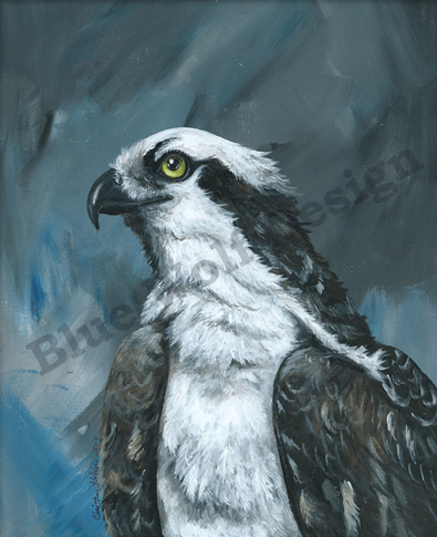 Osprey Storm _ Blue Wolf Design