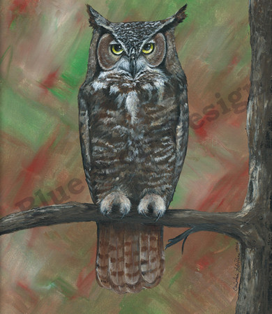 Great Horned Owl _ Blue Wolf Design