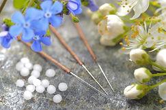 alternative medicine with herbal pills a