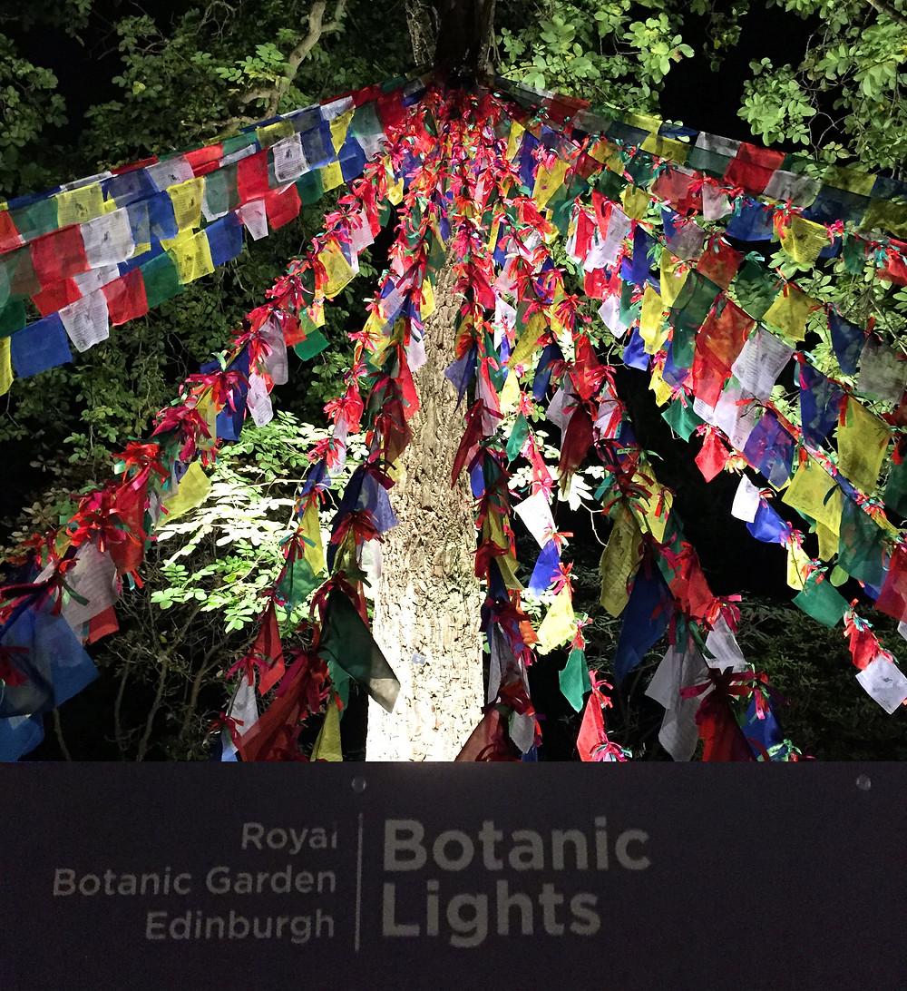 botanics1
