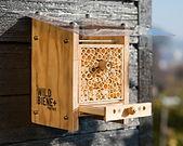 Nichoir pour abeilles sauvages