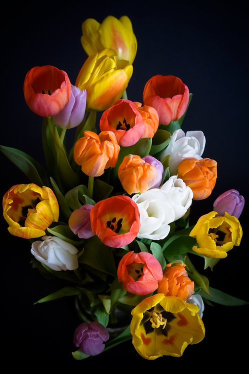 Spring Flower CSA Subscription - 4 Weeks