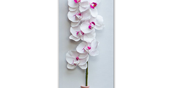 TELA CON ORCHIDEA BIANCA E VASETTO ROSA - 20 x 60 x 2,50 cm