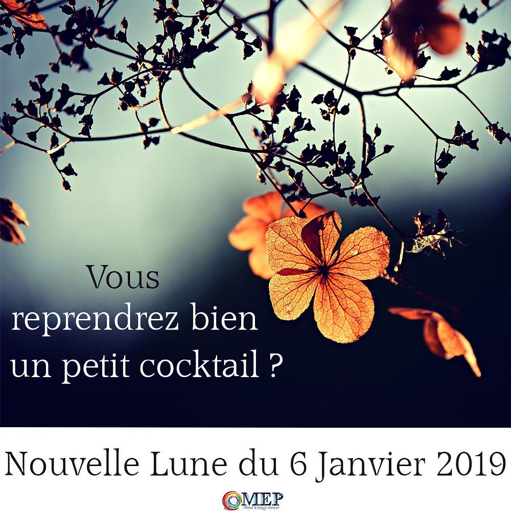 Nouvelle Lune du 6 janvier 2019 - un cocktail de vitalité !