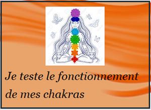 Je teste mes chakras, dossier découvrir les chakras