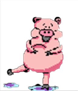 nouvel an chinois, le cochon