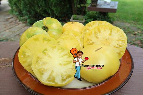 Dwarf CC McGee Tomato
