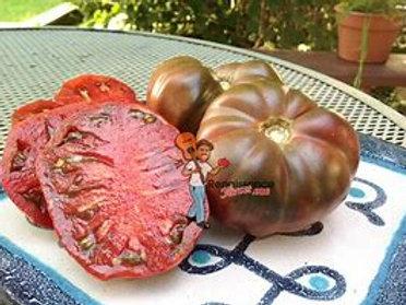 Purple Reign Tomato (Dwarf)
