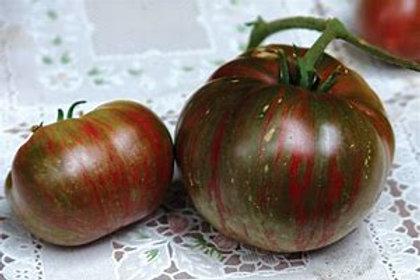 Fred's Tie-Dye Tomato (Dwarf)