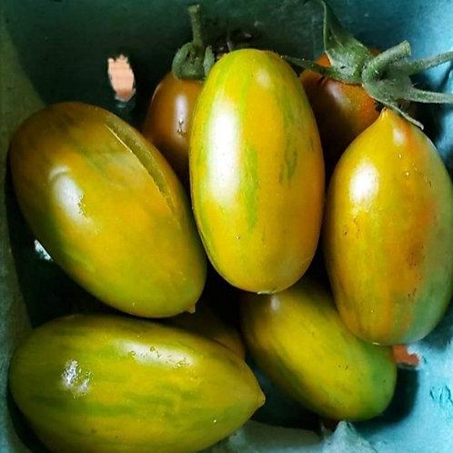 Favorie de Bretagne Tomato (Dwarf)