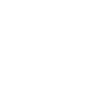 flag-2.png