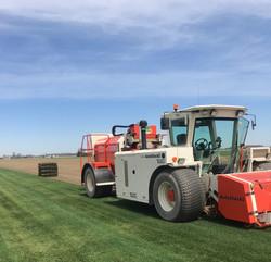 Newest Grass Harvesting Technology