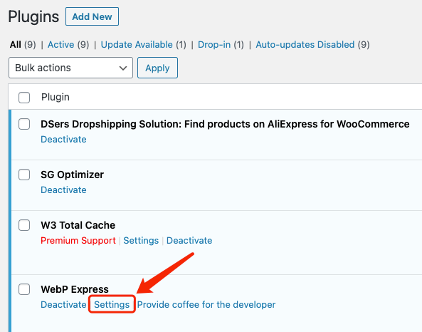 Why I can't push my product from Woo DSers to WooCommerce - Settings of WebP Express - Woo DSers