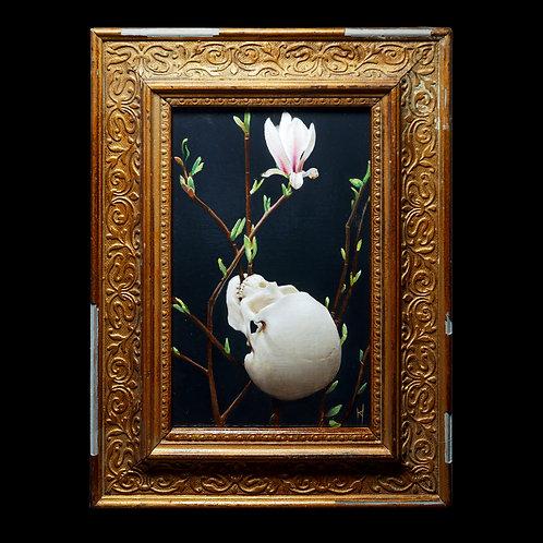 A Cold Spring By Kieran Ingram