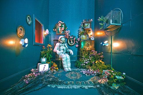 The Lonely Astronaut (46) By Karen Jerzyk