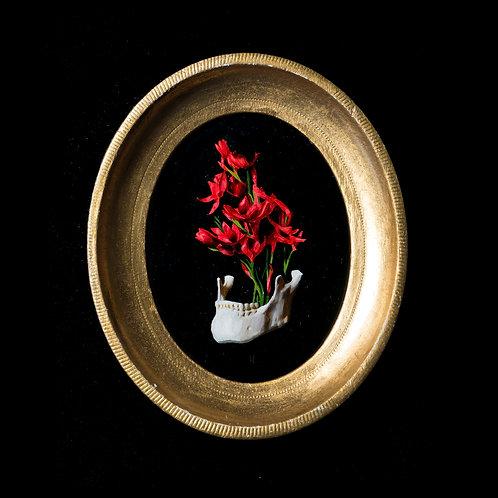 Entangled Shadows By Kieran Ingram