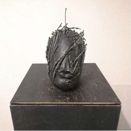 Symbiosis By Tomasz Goornicki