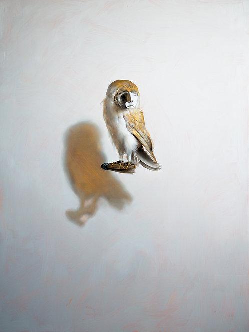 Nyctimene By Kieran Ingram