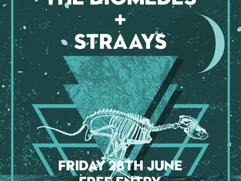 PAST LIVE MUSIC Fri 28th June: The Diomedes & Straays