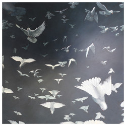 Flock-Signed_Limited_edition_print_-_60x