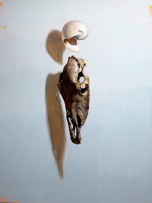 Poseidon By Kieran Ingram