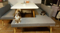BERNIE 餐桌梳化組合