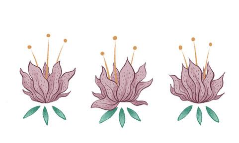 Flower-Trio.JPG