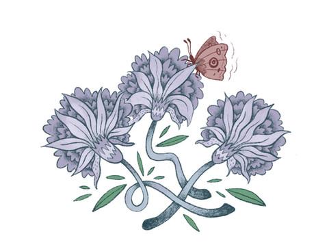 Moth-Flowers.JPG