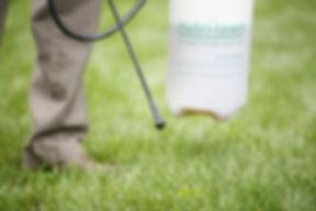 weed spray website .jpg
