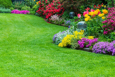 Garden Maintenance website picture 2.jpg