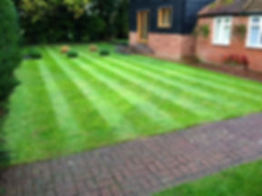 lawn mowing website photo.jpg