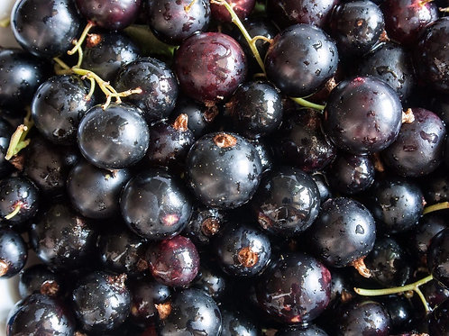 Frozen Blackcurrants (per 500g)