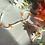 Thumbnail: Islay Daisy Necklace