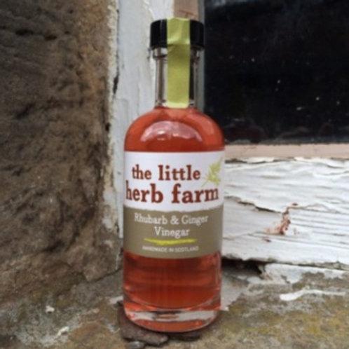 Rhubarb and Ginger Vinegar