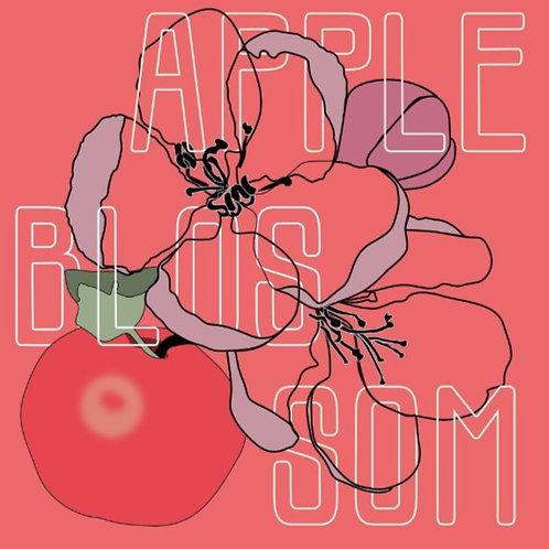 Apple Blossom Kombucha