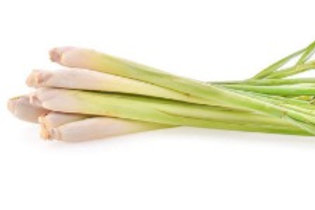 Fresh Lemongrass (50g)