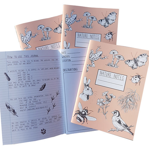 Nature Notes – a family friendly wildlife journal.