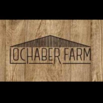 Lochaber farm vegan granola bar (per slice)