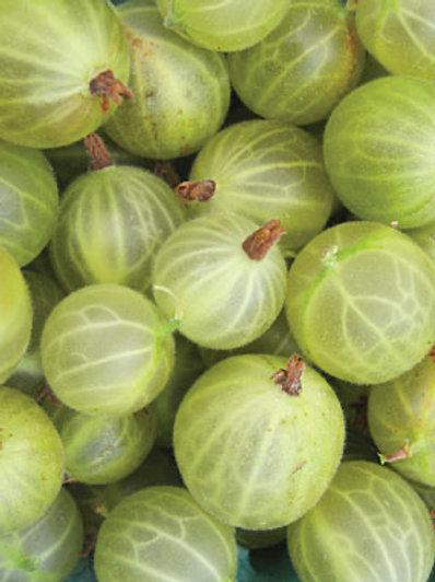Frozen Green Gooseberries (per 500g)