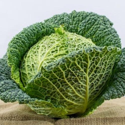 Savoy cabbage (each)