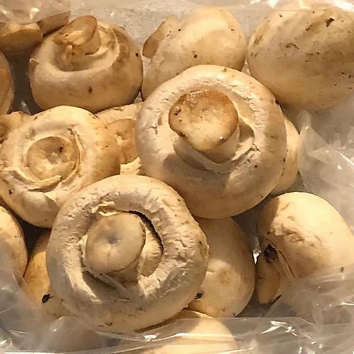 Mushroom box (3lb /~1.4kg)
