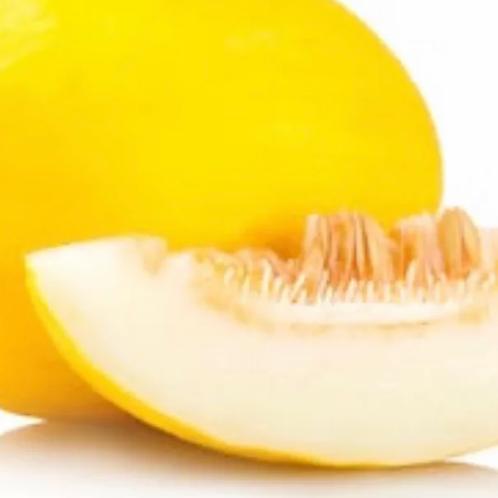 Honeydew Melon (each)