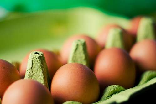 OVER EASY - egg subscription service