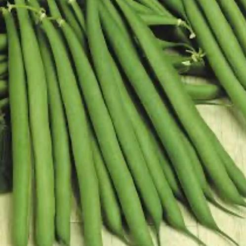 Fine green beans (150g pack)