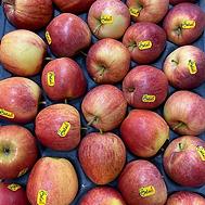 red apples.webp