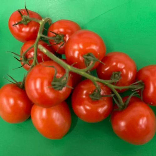 Large vine tomatoes (per vine)