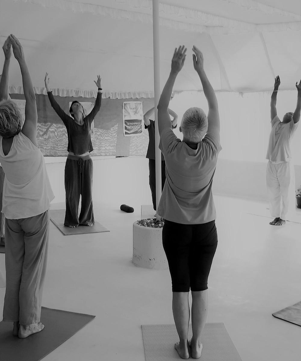 Cours de Yoga de l'énergie, Inde, 2018