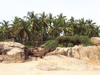 Plage d'Azhimala, Voyage en Inde, Yoga en Inde, Ayurvéda, Inde du sud, Kerala