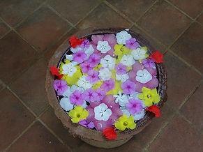 Mandala de fleurs, voyage en Inde, Yoga en Inde, Ayurveda, Massages ayurvédiques, Yoga