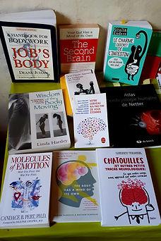 Rencontre Body Mind Centering Nantes, BMC Nantes, Body Mind Centerng Nantes